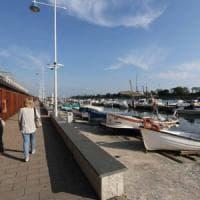 Genova, delfino finisce dentro la fascia di rispetto di Prà