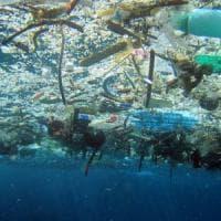 Ambiente: nuovo allarme micro plastiche, specie aliene mari