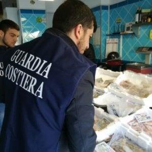 Genova sequestrate due tonnellate di pesce for Cucinare meduse