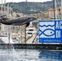 Società, cultura, spettacoli: gli appuntamenti a Genova e in Liguria martedì
