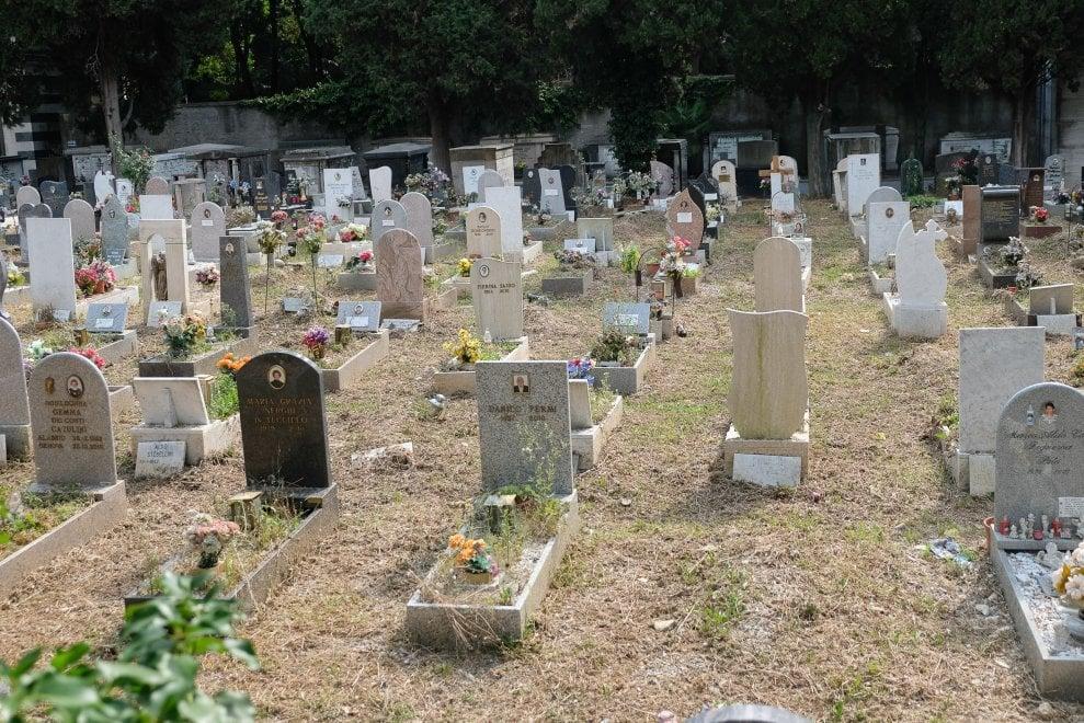 Cimiteri, finalmente sparita la giungla di erbacce a Staglieno, alla Castagna e a Bolzaneto