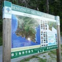 Parco di Portofino, la denuncia di Italia Nostra: