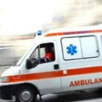 Genova, cammina per strada e viene punto da calabrone: è grave
