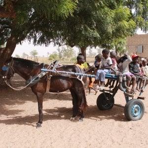 Il Cavallo-scuolabus del Senegal: 50 bimbi a lezione grazie agli sportivi di Pra'
