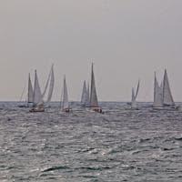 Le Millevele sul mare di Genova, il sindaco imbarca Toti