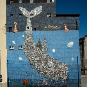 La balena ligure a Porta Palazzo