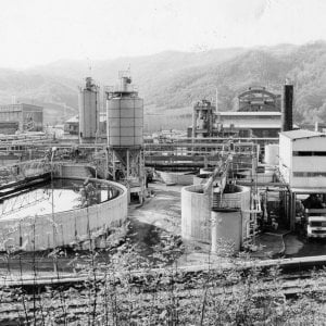 Risultati immagini per Acna, la fabbrica dei veleni