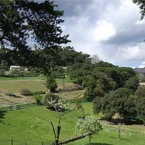 """Maltempo, raccolta fondi per """"curare"""" Villa Duchessa"""