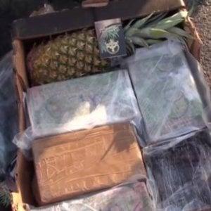 Cocaina nei bancali di ananas, a processo gli spacciatori