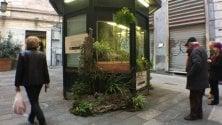 Via Luccoli, il chiosco abbandonato diventa  un vivaio