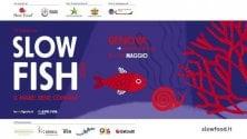 Il pesce e il consumo sostenibile, torna  a Genova Slow Fish