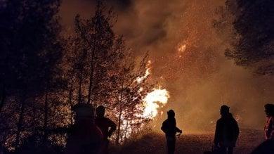 Incendi, nuovi roghi sulle alture di Genova