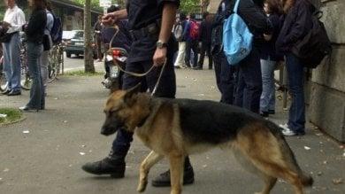 Scuole Sicure, 80mila euro dal Viminale alla Liguria per agenti, cani antidroga e videosorveglianza davanti agli istituti