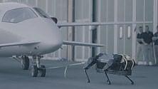 Il robot quadrupede dell'Iit che traina anche gli aerei  Video