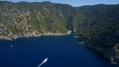 Rep  :  Portofino, cemento e doppiette, l'ultima battaglia del Parco