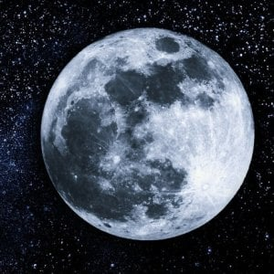 White Nose, intorno alla luna