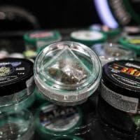Cannabis, no ai sequestri se il Thc è meno dello 0,5%