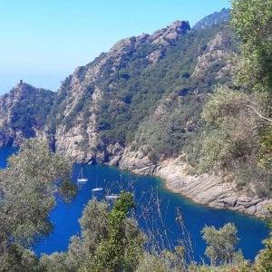 Parco di Portofino, lascia in polemica il direttore Girani