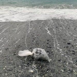 Luca Bizzarri denuncia i sacchi di plastica sulle spiagge. E