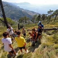 Monte Moro, piantato l'albero numero mille