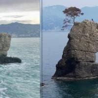 Santa Margherita, la mareggiata cancella il pino della Carega dallo scoglio