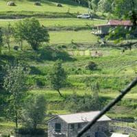 Morire per un neo: l'eco -villaggio felice e i suoi pericolosi apprendisti stregoni