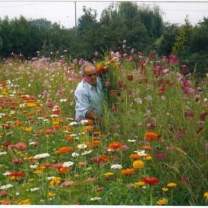 La second life di Biagio Allevato, da operaio che posa l'asfalto alla scoperta delle piante