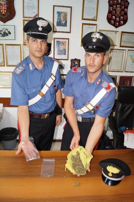 Pavia, non era origano ma marijuana: arrestato pizzaiolo