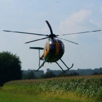 Varese, l'elicottero scopre la piantagione di marijuana