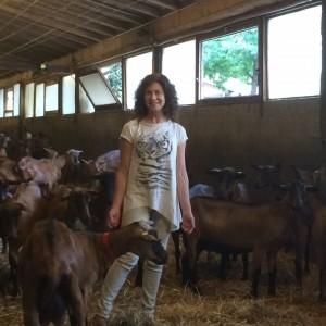 La second life di Chiara Onida, la donna che fissa le capre: dalla matematica al formaggio