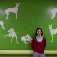 Milano, un artista per ogni muro in pediatria al Fatebene