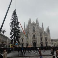 Natale, 60 panchine dall'albero di piazza Duomo