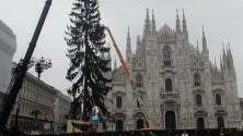 Natale, 60 panchine  con l'albero in Duomo