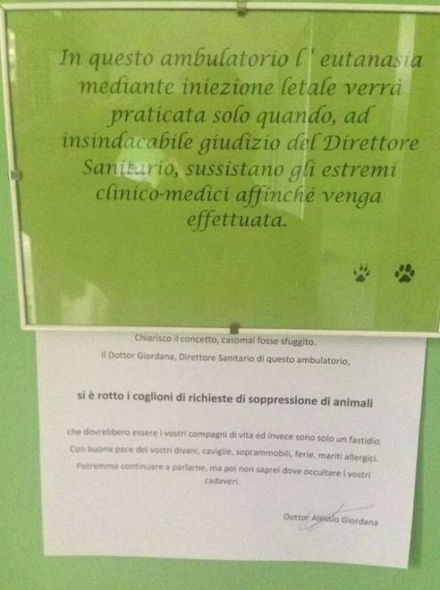 """Il veterinario: """"Non faccio più eutanasie non necessarie"""""""