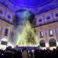 Milano, acceso in Galleria l'albero con 10mila Swarovski