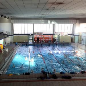 Bresso altri due casi di legionella accertamenti sulle for Piscina olimpia sesto san giovanni nuoto libero