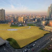 Milano, ecco come sarà il campo di grano fra i grattacieli