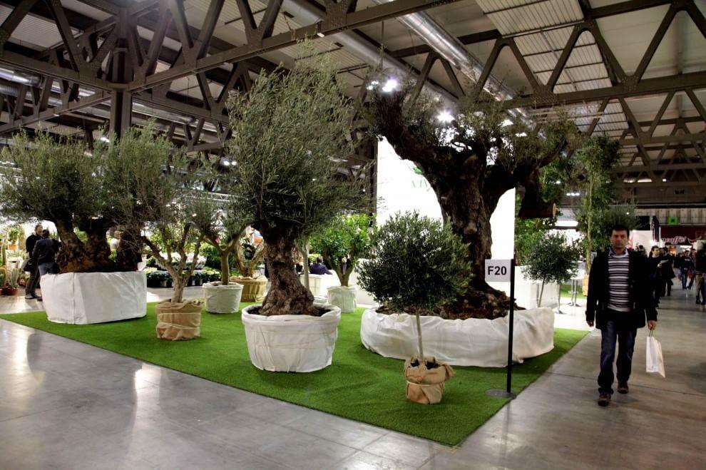 Milano fiori tra i capelli alla fiera del giardinaggio - Fiera giardinaggio ...