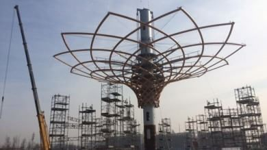 Foto  Expo, ecco l'Albero della vita La chioma hi-tech sta andando su