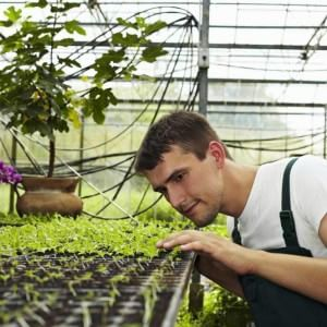 """Petrini: """"Portiamo i giovani contadini all'Expo, sono i veri creatori del cibo quotidiano"""""""