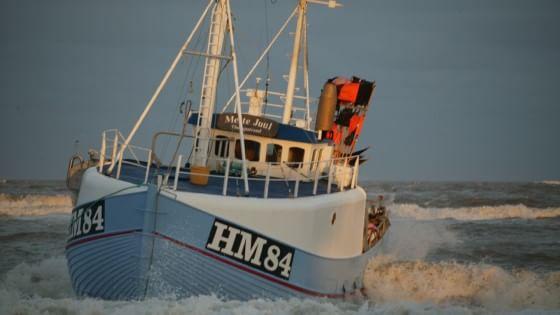 Expo, la coop del mare che ha sconfitto la privatizzazione del merluzzo in Danimarca