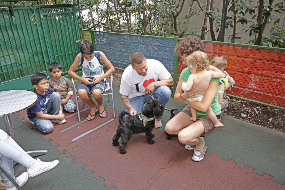Milano, bimbi in ospedale: viene pure il cane