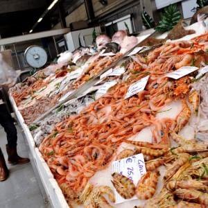 Milano Pesce Sicuro Dal Mare Alla Tavola Il Bollino Di Qualità