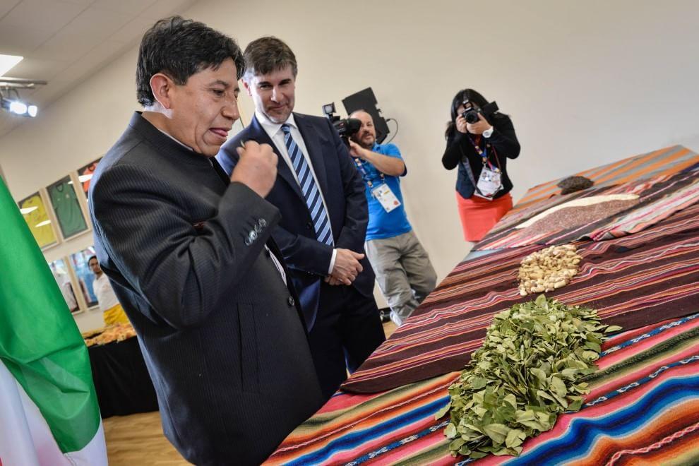 Foglie di coca all'Expo: distribuzione nel padiglione Bolivia