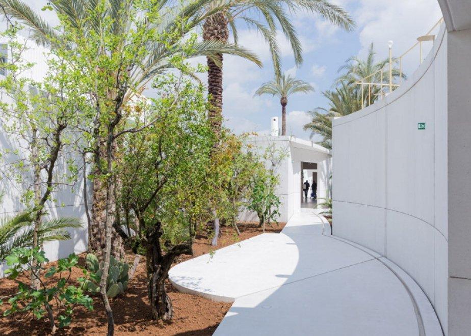 Expo, che fine faranno? L'Eden del Bahrain sarà un giardino botanico