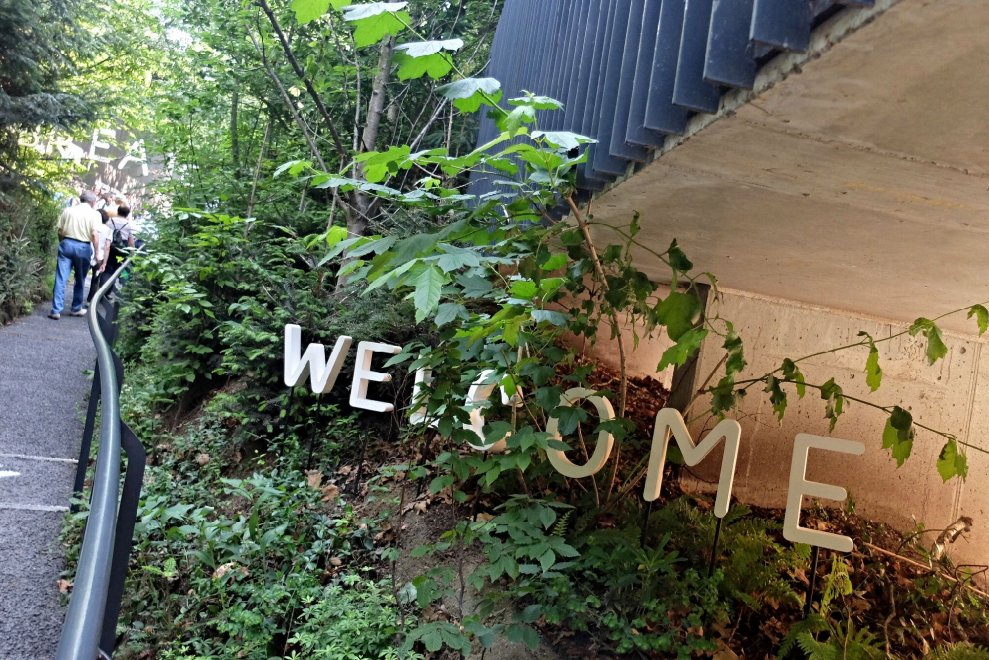 Expo, che fine faranno i padiglioni? La foresta austriaca sui monti del Tirolo