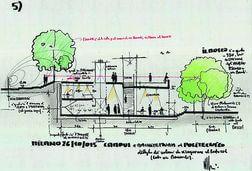 Milano, cento alberi tra le aule: l'idea verde di Renzo Piano per il campus Politecnico
