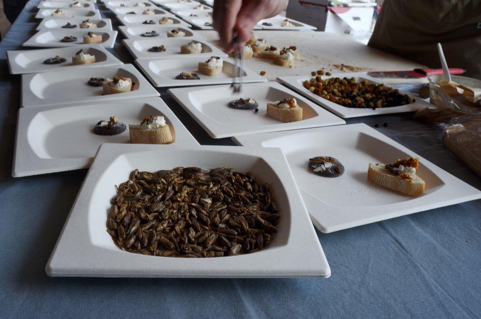 a Expo la prima degustazione con chef