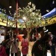 Expo, Mondiali tra i padiglioni: 26.780 voti il Kazakistan straccia tutti, primo con il 53%