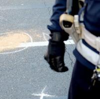 Valtellina, auto fuoristrada finisce contro un albero: marito e moglie muoiono sul colpo